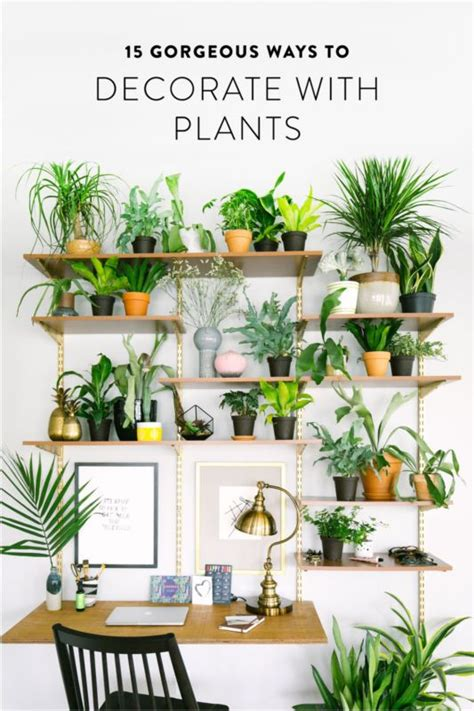 apartment plants ideas best 25 balcony definition ideas on pinterest small balcony garden hang definition and