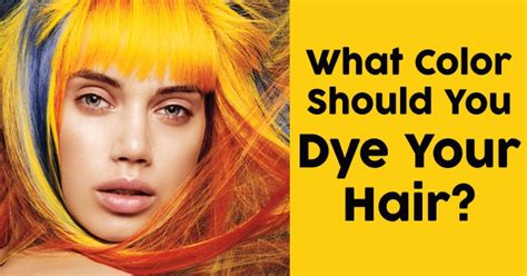 hair color terms you should what color should you dye your hair quizdoo