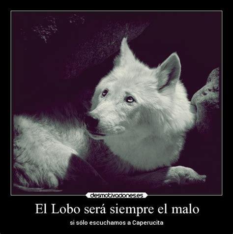 imagenes de lobos tristes usuario cryxx desmotivaciones