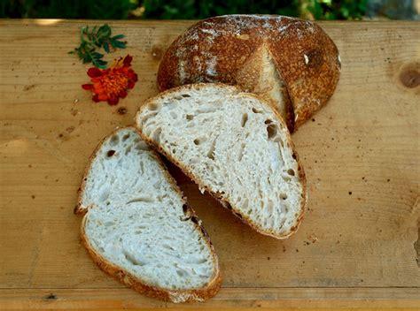 apple yeast bread apple yeast bread