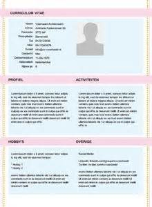 Voorbeeld Cv Sjabloon Gratis 1000 Images About Gratis Cv Sjablonen On Compact And Modern