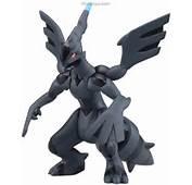 Pokemon Zekrom  PLAMOYA