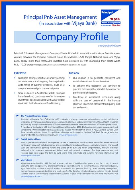 business profile on letterhead 9 company business profile sle company letterhead