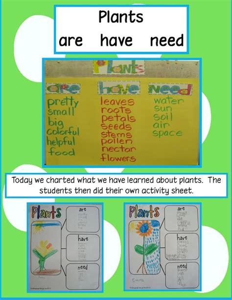 free technology for teachers hammocks plants and bedrooms kindergarten plants unit ideas if you already don t