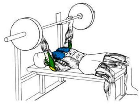 the bench press liftrite video guide the bench press