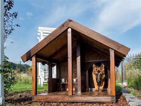 tettoie design marvellous design tettoie per cani 4 consigli la cuccia