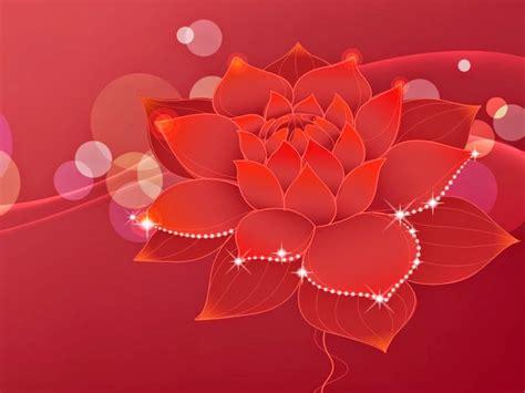 imagenes tiernas fondo de pantalla rosas con brillo flores hermosas lindas hermosas
