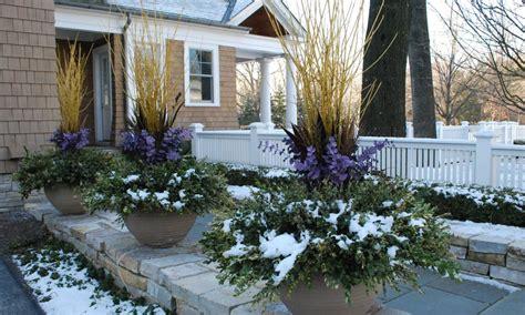 Winter Gardening Tips Archives Acegardener Winter Gardening Ideas