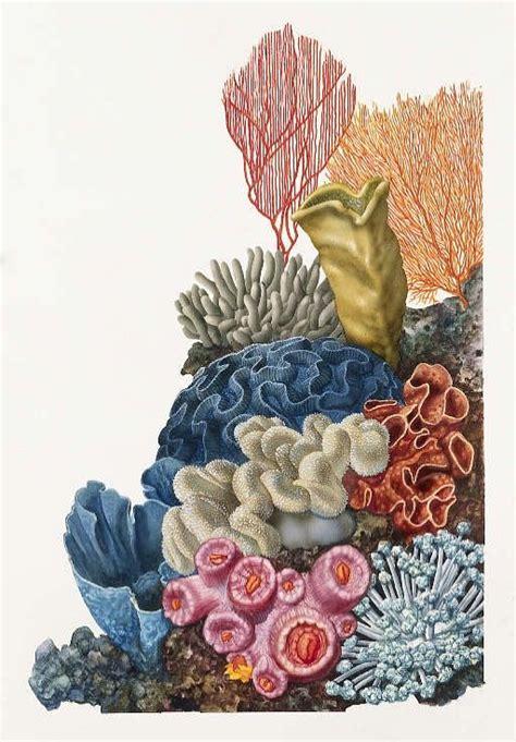 coral reef tattoo designs 5b99b4a5d20890e6f0a2679055a1156c jpg 512 215 736