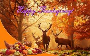 android thanksgiving wallpaper thanksgiving wallpapers hd android apps on google play