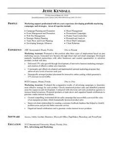 Example Marketing Assistant Resume   Free Sample