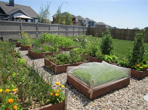 raised bed vegetable gardening tips garden design ideas