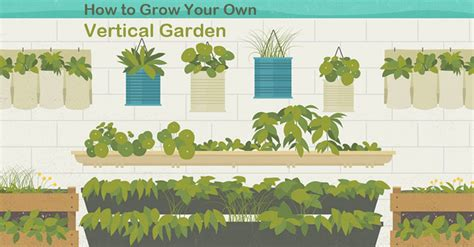 How To Do Vertical Gardening Vertical Gardening An Infographic