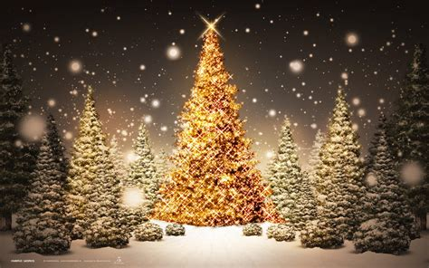 happy christmas  images hd wallpapers    fb whatsap
