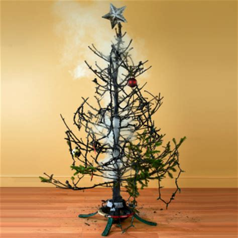 setting up christmas tree tree safety tips how to set up a tree