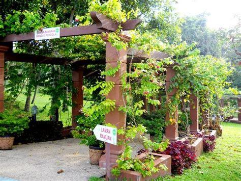 mpv landskap  nurseri taman ramuantaman herba mardi