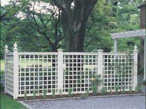 trellis privacy fence ideas 17 best ideas about trellis fence on diy