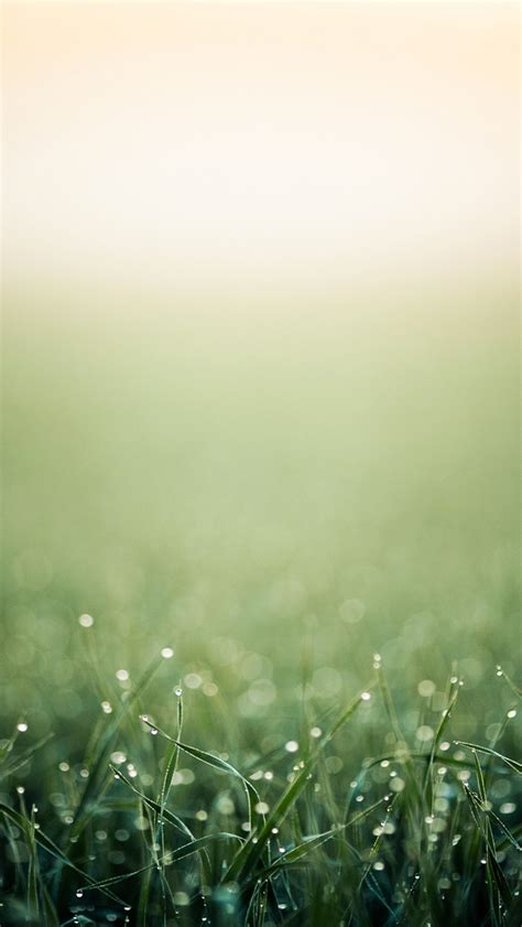 iphone wallpaper green grass modern free iphone wallpapers no 3 premiumcoding