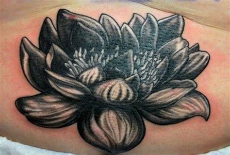 lotus leaf tattoo meaning best 25 lotus flower meanings ideas on pinterest