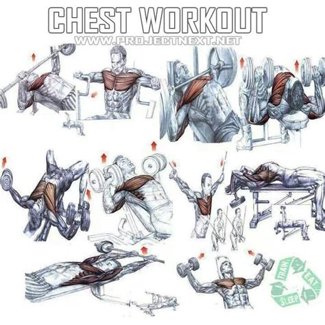 pin by logan p on stuff chest workouts workouts and best chest workout