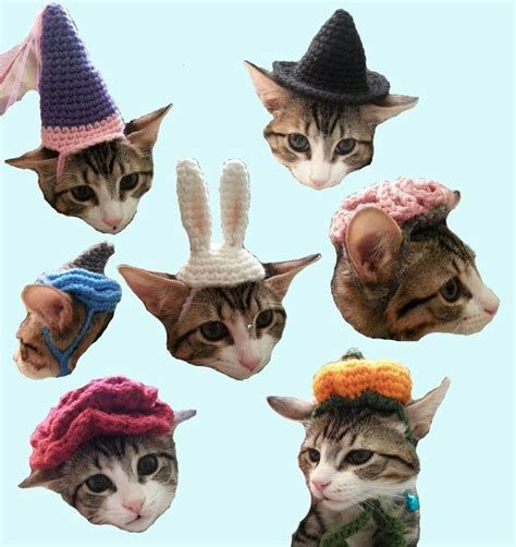 pattern for cat in the hat costume crochet hats for cats 7 crochet patterns for cat hats