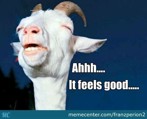 Happy Goat Meme - happy goat by franzperion2 meme center