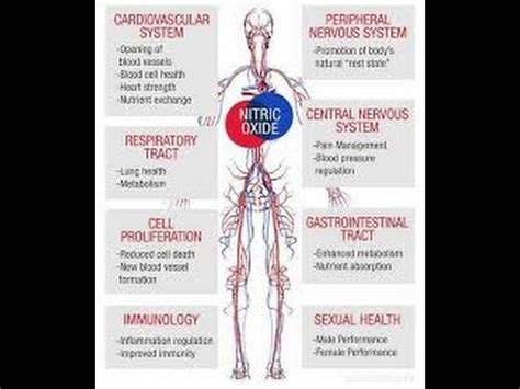 blood sugar  medication  blood