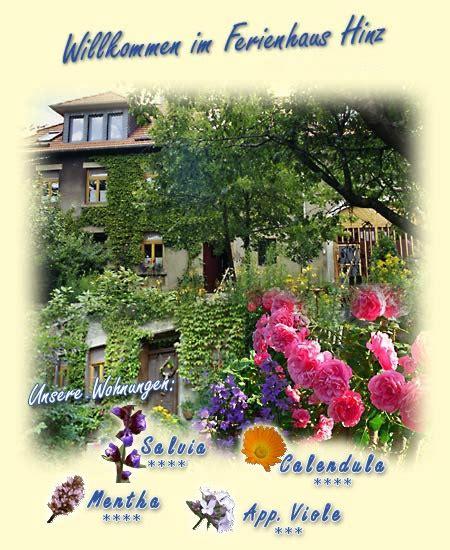 natürlich wohnen ferienhaus hinz in buhlenberg nat 252 rlich wohnen im