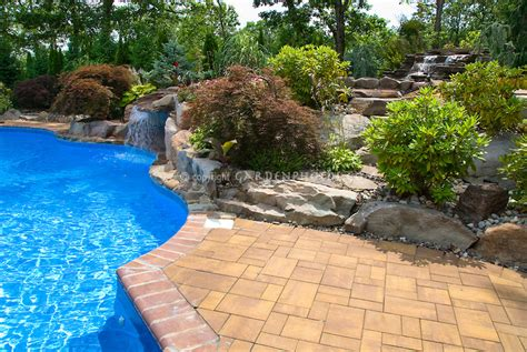 swimming pool landscaping plant flower stock photography gardenphotos com