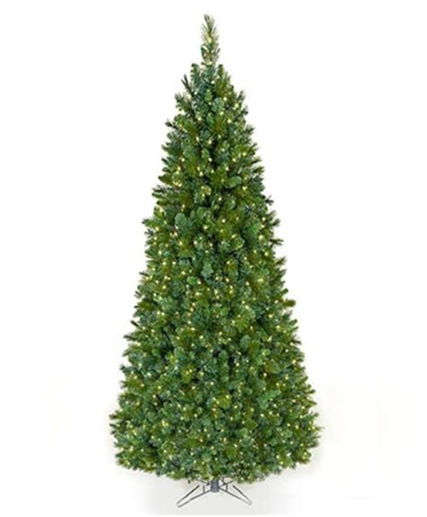 slim northern spruce christmas tree tree classics