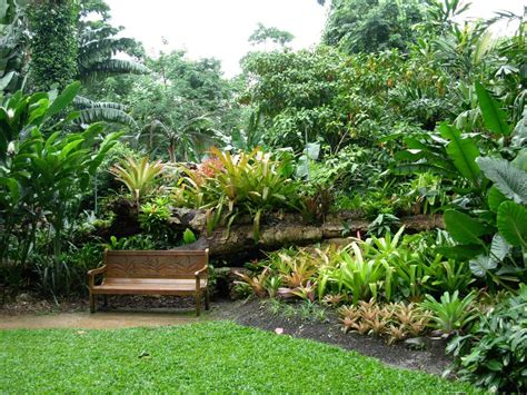 How To Make The Most Of A Visit To Cairns Botanical Gardens What Time Does The Botanical Gardens