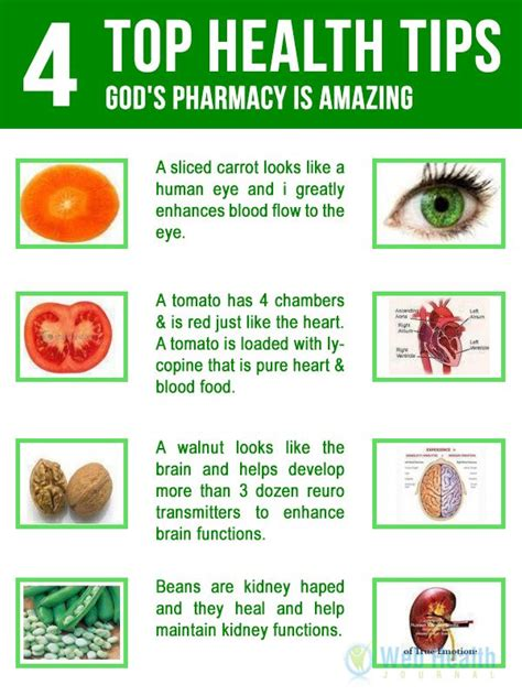 17 best ideas about health 17 best images about health on pinterest vitamin b