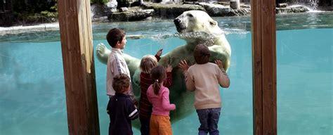 Zoo La Fleche Hebergement 3055 by Zoo De La Fl 232 Che
