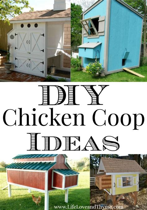 Chicken Coop Decorating Ideas by Diy Chicken Coop Ideas And Thyme