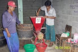 As Tahu Sebagai Pakan Ternak Ayam limbah untuk pakan ikan penyuluh perikanan bangka barat