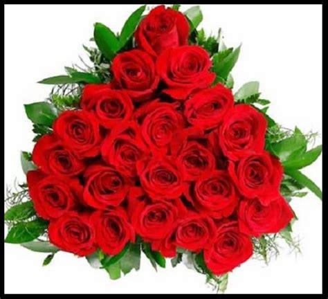imagenes bellas rojas imagenes de flores exoticas imagen de rosas rojas