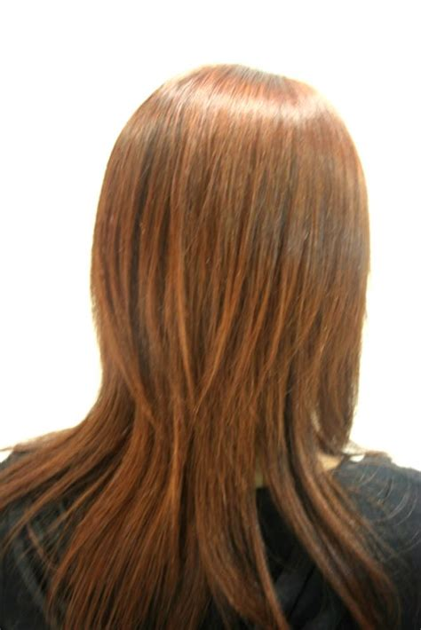 back view of long ombre hair jpg dark brown hairs