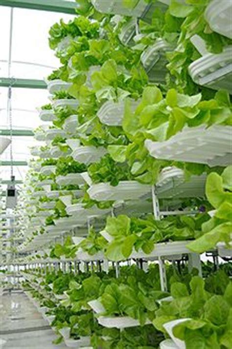Bunga Goyang Motif Energy Solar Moving Plant Pot Murah ferme verticale wikip 233 dia