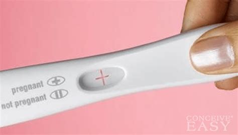 best time to take a home pregnancy test what is the best