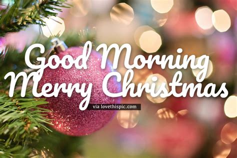 ornament good morning merry christmas quote pictures   images  facebook tumblr