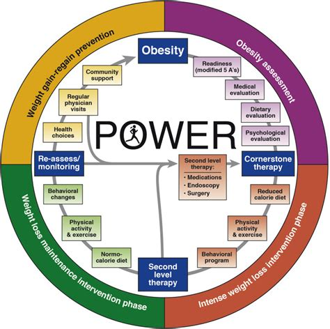 weight management education white paper aga power practice guide on obesity and