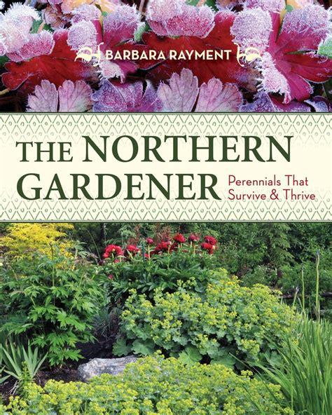 17 best ideas about perennial gardens on pinterest
