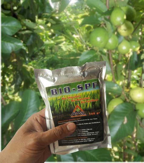 Nopatek Pengendali Jamur Busuk Buah Dan Busuk Daun 1 pengendali penyakit pd jambu organik mmc agrokompleks mmc