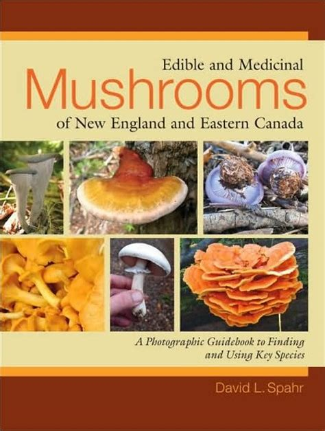 student s book of mushrooms of america edible and poisonous classic reprint books foraging edible plants mushrooms