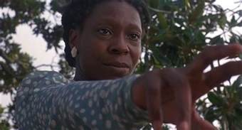 the book the color purple has been deemed obscene in some communities celie johnson the narrator of walker s novel quot the