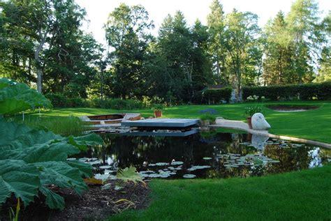 Water Garden Gems by Aviemore Garden Water Gems