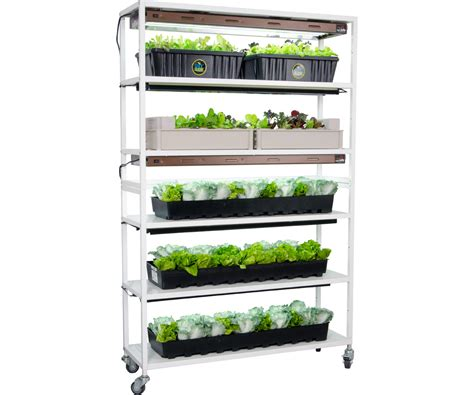 How To Grow Top Shelf by Grow Equipment Growing Equipment For Pros And Beginners