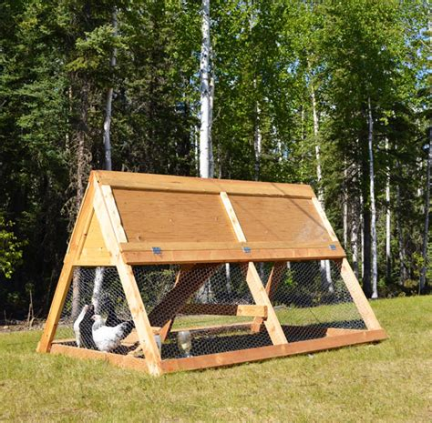 ana white a frame chicken coop diy projects