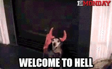 Animated Gif Meme Generator - welcome to hell dog gif weknowmemes
