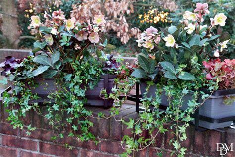 fiori nord il balcone d inverno verde e bello dal nord al sud